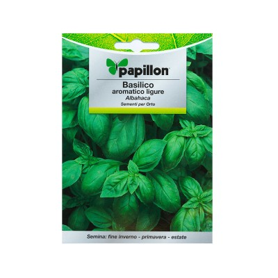 Seeds of Aromatic Basil 5g