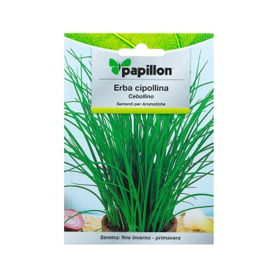 Seeds of Chives 1g